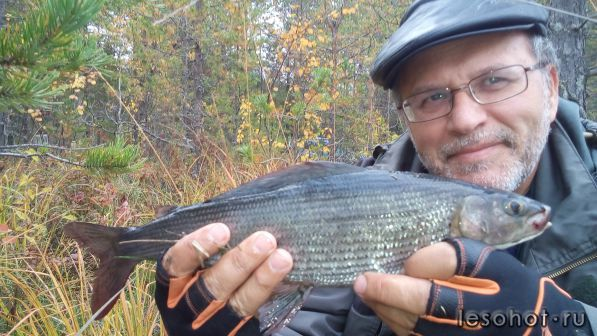 сегозеро как рыбалка