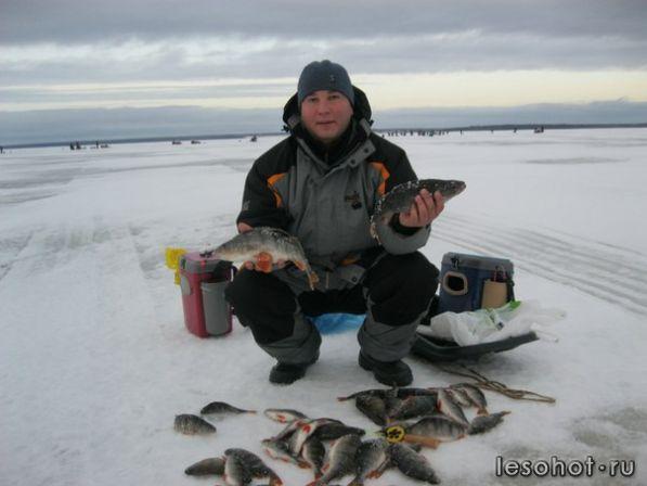 форум рыболовов ярославской области фион