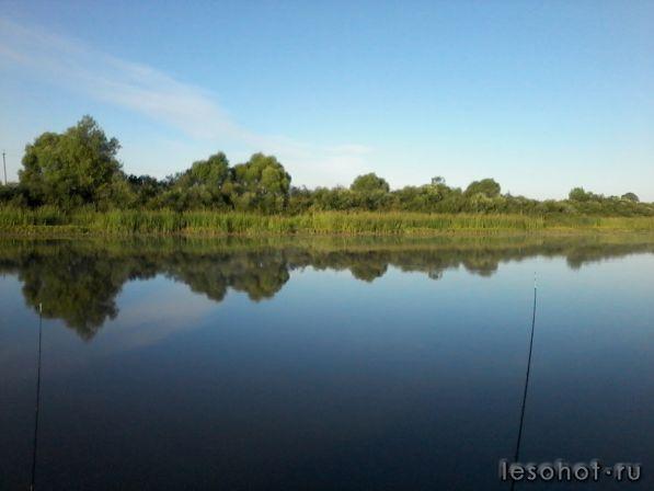 шатурские озера центральный форум рыбаков