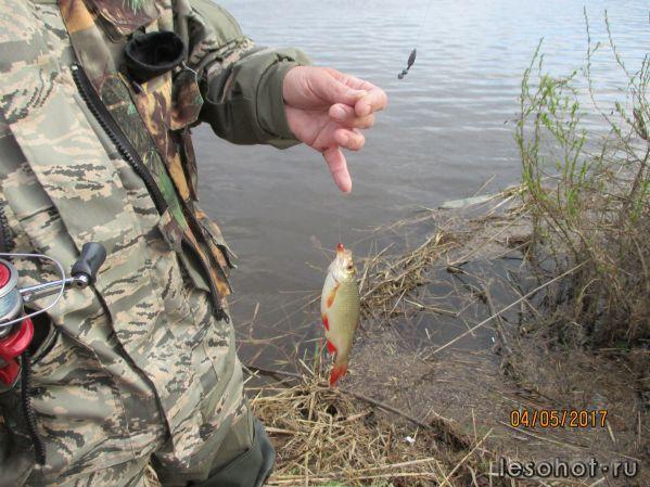 Рыбалка в Ярославле Ярославский Клуб Рыболовов  VK