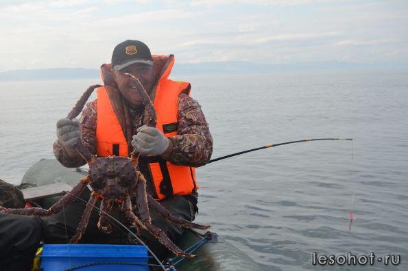 Снасти для ловли краба в баренцевом море