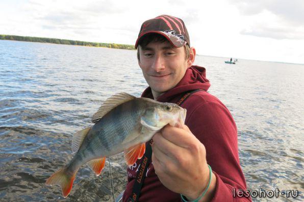 отчет о рыбалке рыбинка борок