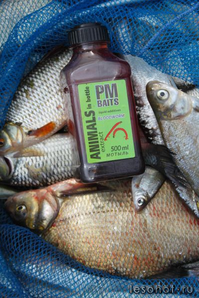 магазин все для рыбалки канск