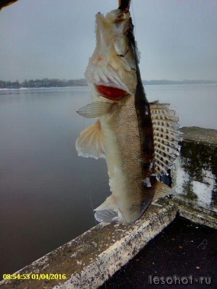 рыболовный на речной вокзал