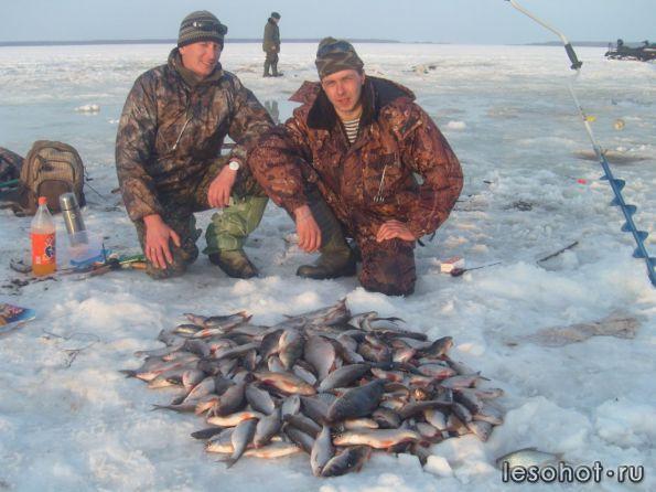 запреты на рыбную ловлю в калуге