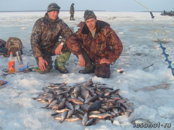 рыбалка 44 форум кострома сегодня