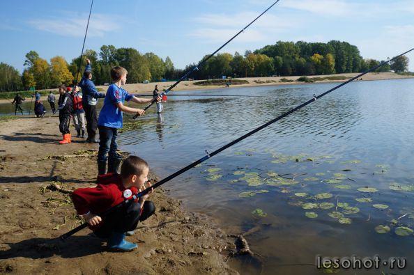 как провести чемпионат по рыбной ловле