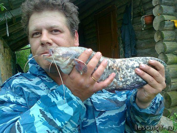 Общество рыболовов в иваново