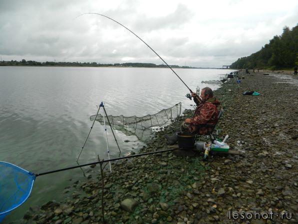 угличский район рыбалка