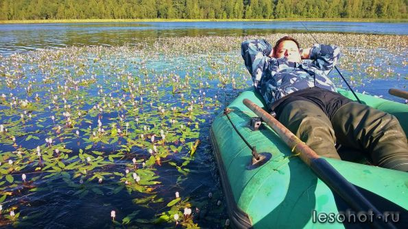 рыбалка на шекснинском водохранилище фото