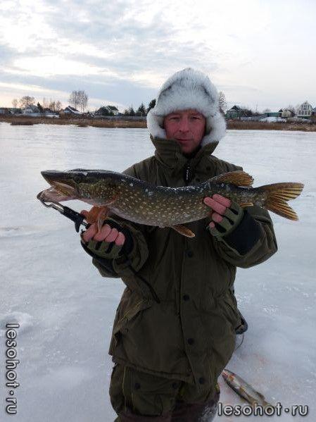 рыбалка на саре ярославской