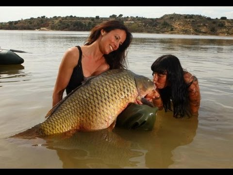 SEXY GIRL FISH A RECORD CARP 60 LBS by YURI GRISENDI