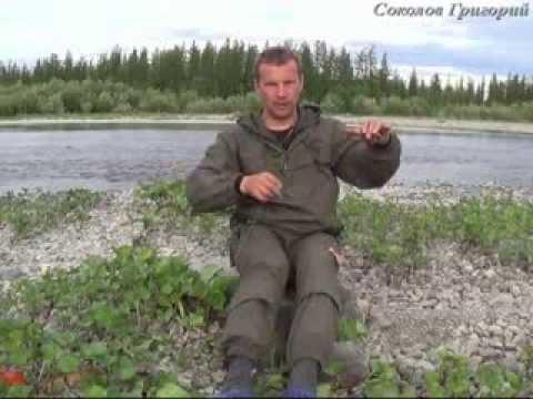 Кривда рыболовная снасть как сделать