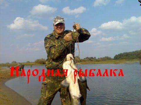 приколы про рыбалку торрент